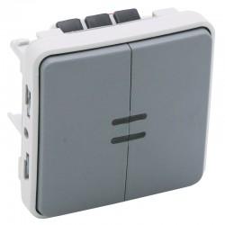 Legrand - Double interrupteur ou va-et-vient lumineux Plexo composable IP55 10AX 250V - gris - Réf : 069526