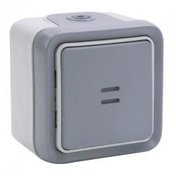 Legrand - Interrupteur ou va-et-vient lumineux Plexo complet IP55 saillie 10AX 250V - gris - Réf : 069713